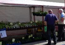 Bovey Tracey Farmers' Market