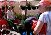 Brixham Farmers' Market